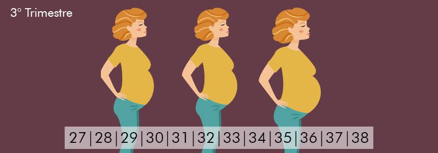 Ejercicio durante el embarazo-03